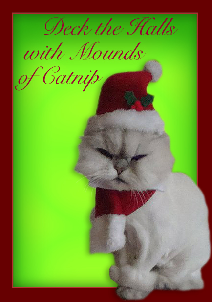 A Christmas Greeting From Your Neighborhood Pet Sitter!